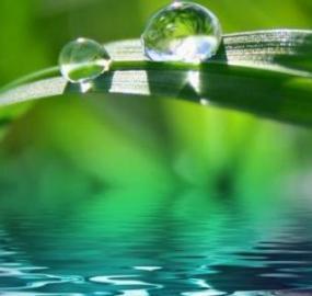 Hva er kildevann og hvordan skiller det seg fra mineralvann?
